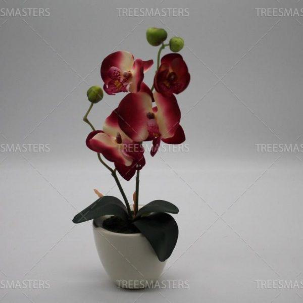 Искусственная композиция: Орхидея в немецкой керамике