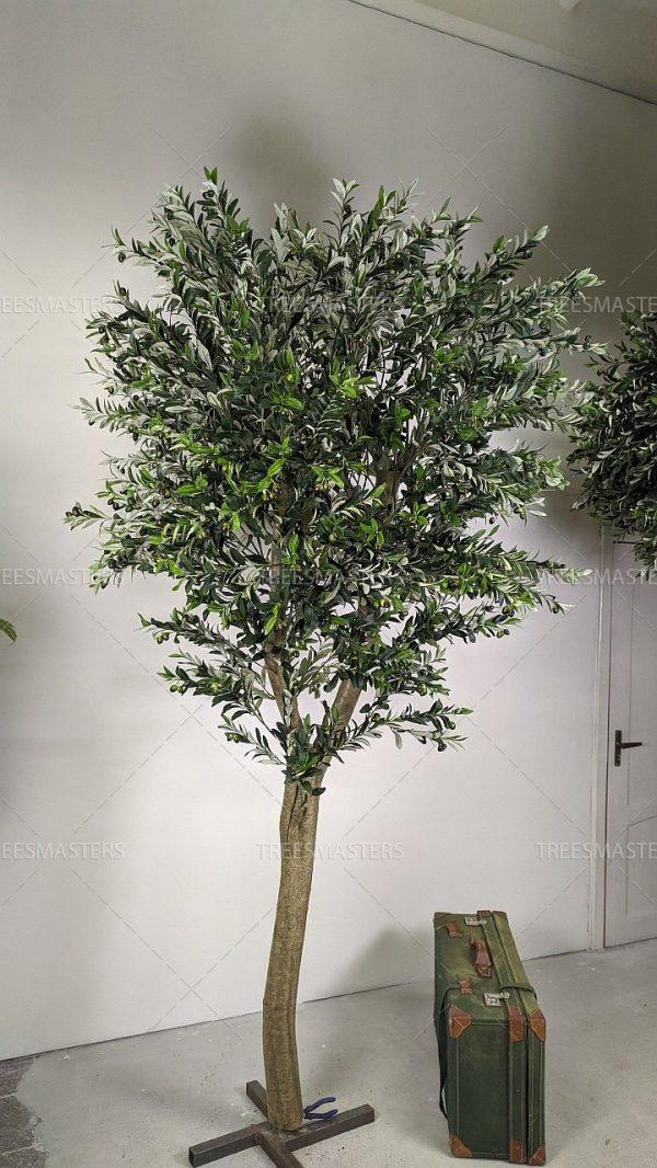 Искусственное дерево, Олива