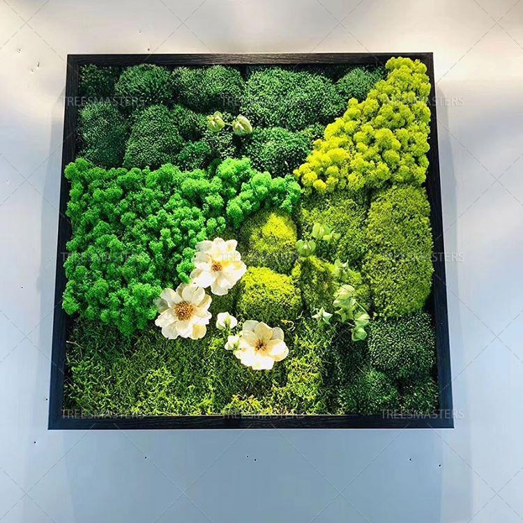 Стабилизированный мох в композиции