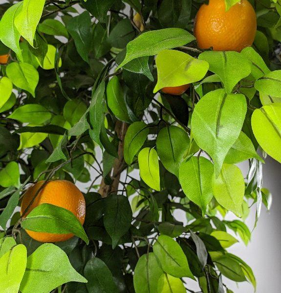 Искусственное апельсиновое дерево, 150-210см