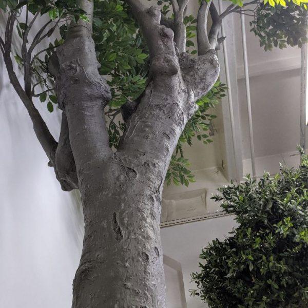 Искусственный фикус, крупномер, 5 метров
