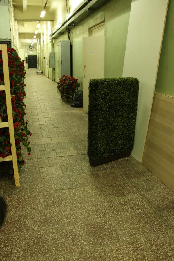 Изгородь из искусственного самшита, 50-250 см